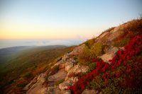 Groetekaartjie maatskappye gebruik dikwels landskap foto`s vir hul kaarte.