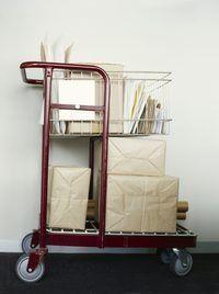 Dop U.S.Postal Service pakkie by Amerikaanse doeane deur opgekyk strepieskodes op die Internet.