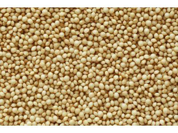 Close-up van voedingstowwe wat groot hoeveelhede Lysine bevat