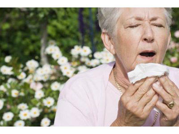 Volwasse vrou op die punt om nies as gevolg van haar allergieë