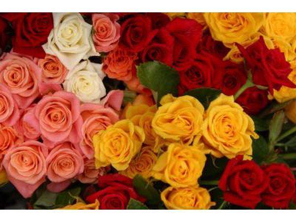 Die kleur rose wat jy kies kan gebruik word om jou gevoelens oor te dra.